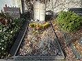 Friedhof friedenau 2018-03-24 (4).jpg