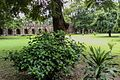 Garden inside of Sikander Lodi's Tomb (02).jpg