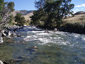 Gardner River - Gardner River near its confluence with the Yellowstone River