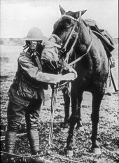 A man wearing a gas mask and helmet stands next to a tacked up horse wearing a gas mask.