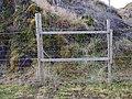 Gate in deer fence - geograph.org.uk - 1085649.jpg