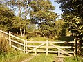 Gate to rougher part of track east of Home Farm - geograph.org.uk - 1519956.jpg