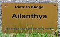 Gedenktafel Spandauer Damm 130 (Westend) Ailanthya&Dietrich Klinge.jpg