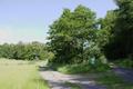 Gemuenden Ehringshausen Feldatal road fork meadows.png