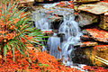 Gfp-texas-dallas-waterfall-in-gardens.jpg