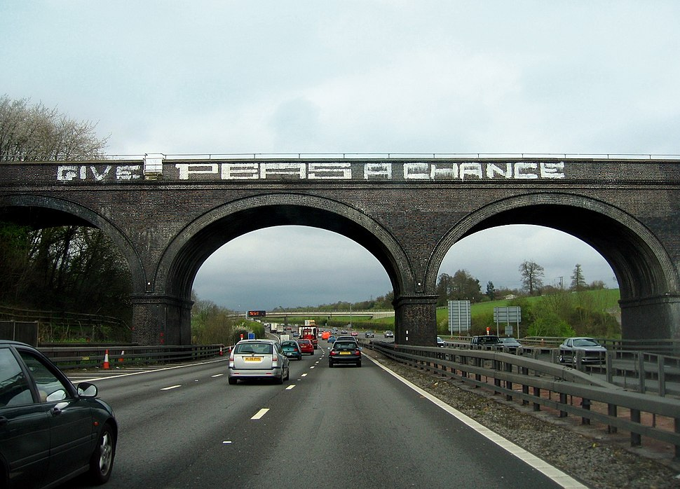 Give Peas A Chance - geograph.org.uk - 1723109