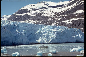 Glacier Bay National Park and Preserve GLBA4361.jpg