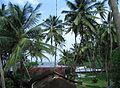 Goa - Scenes (13).JPG