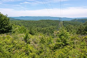 Gorges State Park - Duke Energy power lines cut through along Grassy Ridge