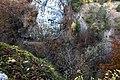 Gorges de l'Orbe - img 45870.jpg