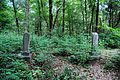 Gospel Pilgrim Cemetery, photographer facing west.JPG