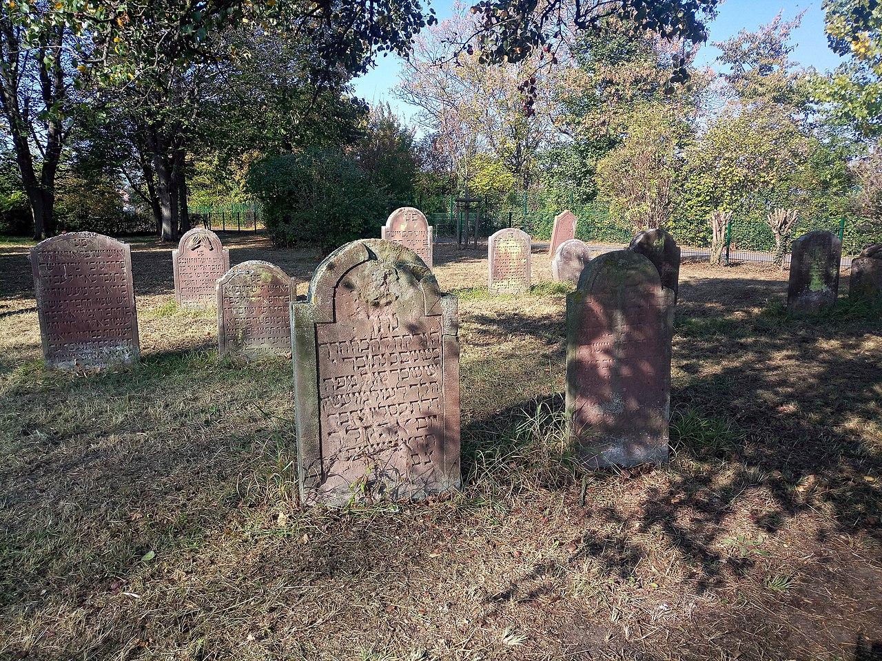 Grünstadt Judenfriedhof 4.jpg