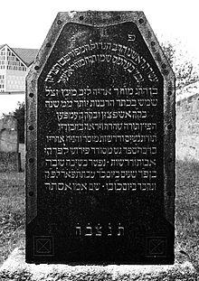 Lazar Münz Wikipedia