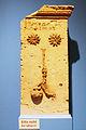 Grabstein des Hermodoros, Chersonesos, 4. – 3. Jahrhundert v. Chr., Kalkstein, 63 cm.jpg