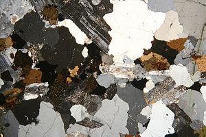 User Kopiersperre Historical Geology Print Version