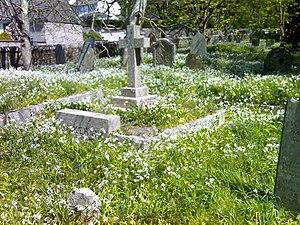 Helston - St Michael's churchyard