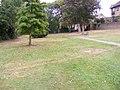 Great Baddow Recreation Ground - geograph.org.uk - 1499620.jpg