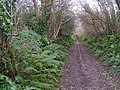 Green Lane from Duncombe Cross - geograph.org.uk - 308102.jpg