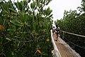 Greeneries of San Vicente Marine Sanctuary.jpg