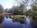 Großer Giebelsee 1.jpg