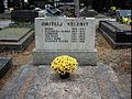 Grob porodice Velebit, Mirogoj.jpg