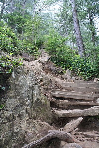 Grouse Mountain grind. From Discover Vancouver: Off the Beaten Path