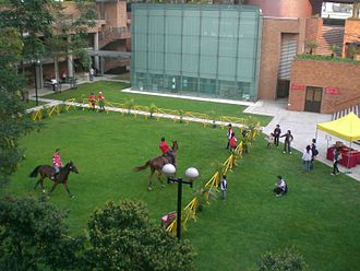 Hong Kong Polytechnic University - Open Day meadow horse riding on campus