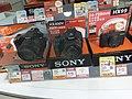 HK TST 尖沙咀 Tsim Sha Tsui 海港城 Harbour City mall shop camera Sony August 2020 SS2 01.jpg