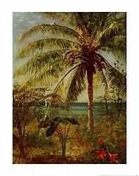Albert Bierstadt: Palm Tree, Nassau by Albert Bierstadt