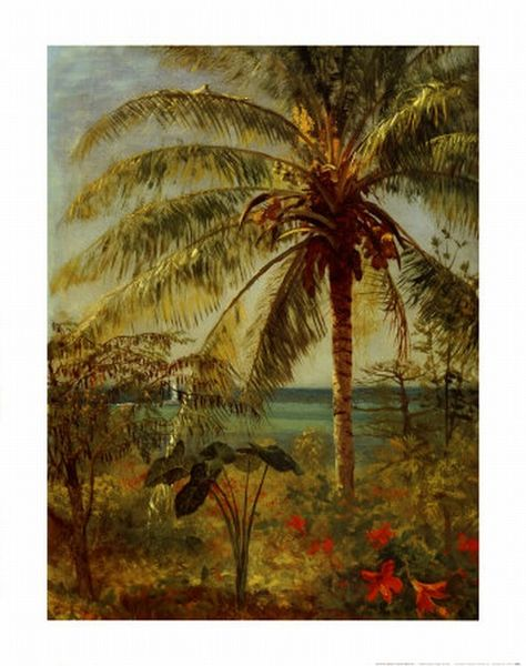 File:HRSOA AlbertBierstadt Palm Tree Nassau.jpg
