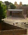 Habitation Senegal.png