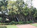 Hacienda Cocoyoc 2003-001.JPG