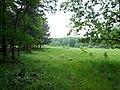 Halemba, Ruda Śląska, Poland - panoramio (2).jpg