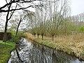 Hamm, Germany - panoramio (4980).jpg
