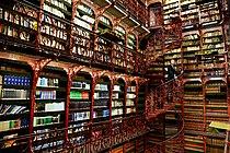 Handelingenkamer bibliotheek binnenhof.jpg