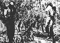 Hanged sergeants.jpg