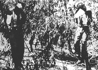 The Sergeants affair - The hanged bodies of Sergeants Clifford Martin (left) and Mervyn Paice.