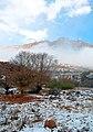 Haraz - Amiri - Hareh - panoramio.jpg