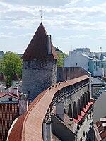 Hellemanni torn 2011-05-21.JPG