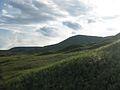 Hermosas colinas la gran sabana.jpg