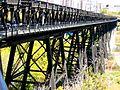 High level bridge in Edmonton -d.jpg