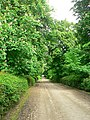 Higher Coach Road - geograph.org.uk - 1340577.jpg