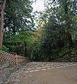 Hikone castle , 彦根城 - panoramio (5).jpg