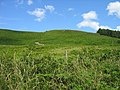 Hill near Titlington Pike - geograph.org.uk - 1438288.jpg