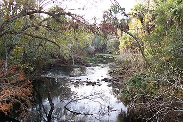 Hillsborough River State Park 15.jpg