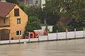 Hochwasser-Linz-02.06.2013-3.JPG