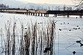 Holzbrücke - Seedamm - Obersee - Rapperswil HSR 2012-01-16 15-27-10.JPG