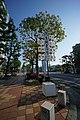Honmachi, Himeji, Hyogo Prefecture 670-0012, Japan - panoramio (33).jpg
