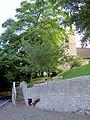 Hooton Pagnall Church. - geograph.org.uk - 530487.jpg