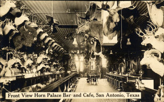 Buckhorn Saloon & Museum (San Antonio) - Image: Horn Palace Bar and Cafe, San Antonio, Texas